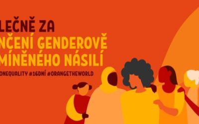 25. listopadu, na Mezinárodní den za odstranění násilí na ženách, začíná již tradiční 16 denní kampaň OSN, která vrcholí na Den lidských práv (10. prosince).